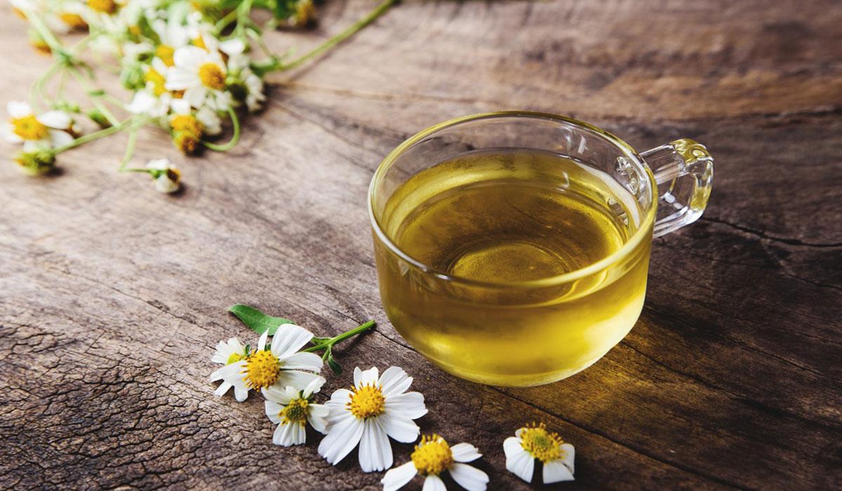 اعشاب لزيادة الوزن.. وتحسين الشهية بشكل طبيعي.. وفوائد صحية أخرى
