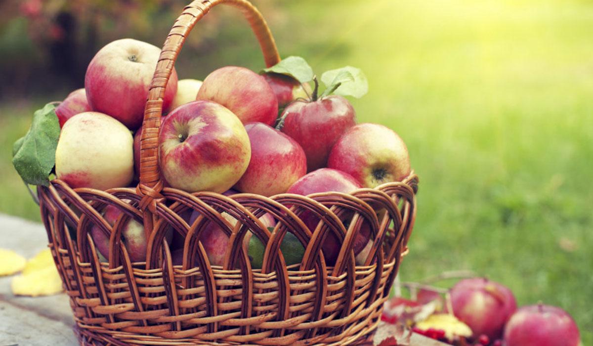 رجيم التفاح الصحي.. تخلص من 5 كيلوجرامات في أسبوع واحد